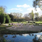 Фламинго в зоопарке Штутгарта