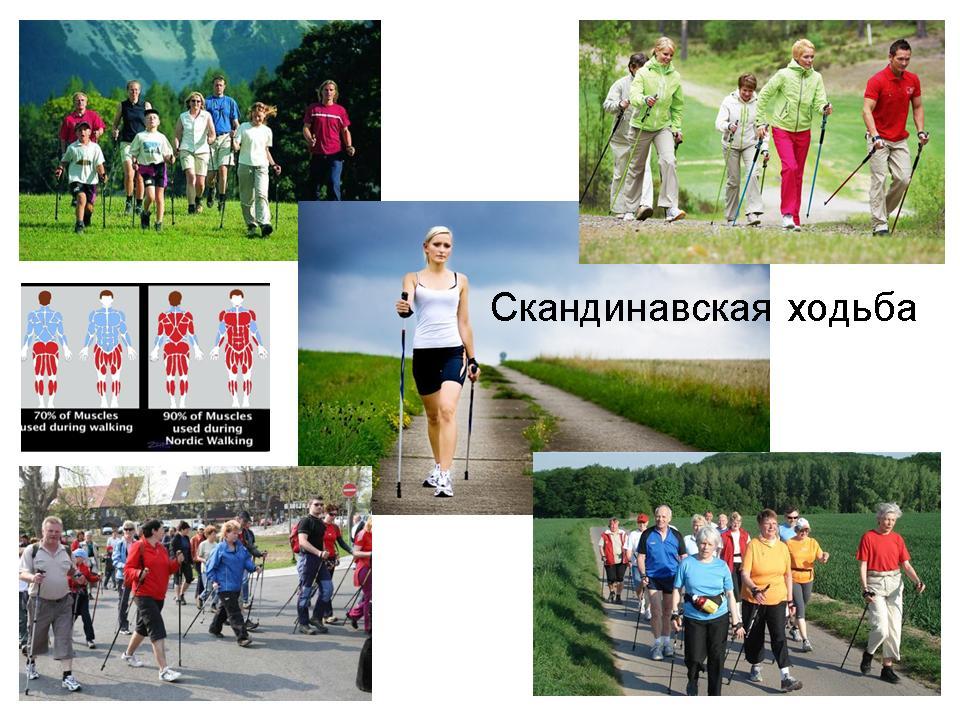 Скандинавская ходьба. Популярный фитнес