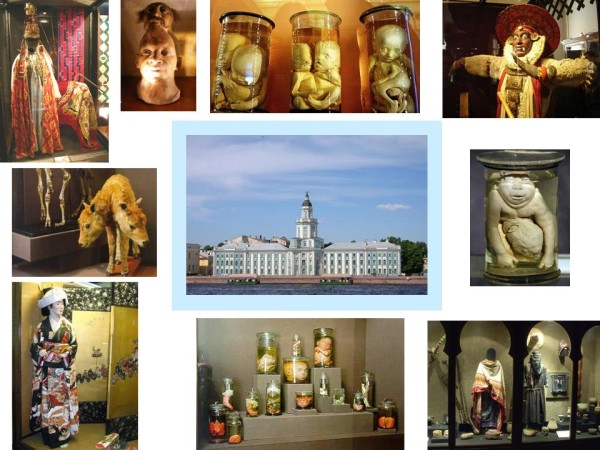 Кунсткамера. Санкт-Петербург