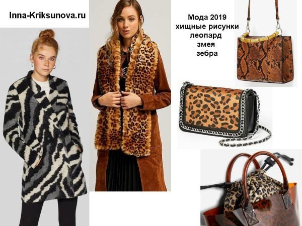 Модные принты 2019 - леопард, зебра, змея