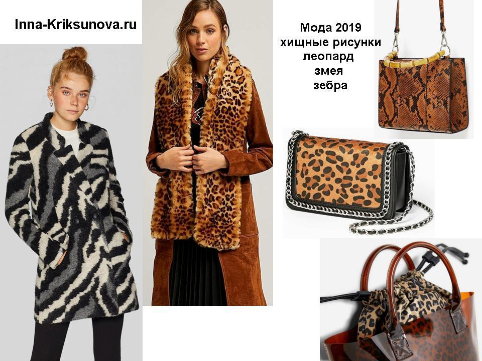 Модные принты - леопард, зебра, змея