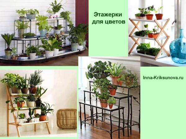 Комнатные цветы в интерьере на этажерках